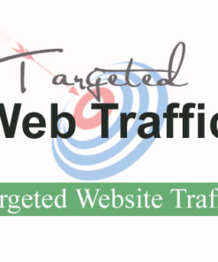 Buy Targeted Website Traffic - Buy Website Traffic that converts