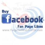 Buy Facebook Fan Page Likes Cheap