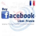 Buy Cheap Facebook Likes France