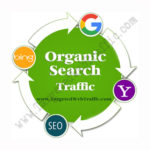 Buy Organic Website Traffic | Buy Organic Search Traffic