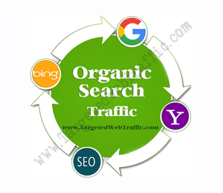 Buy Organic Website Traffic | Buy Organic Search Traffic