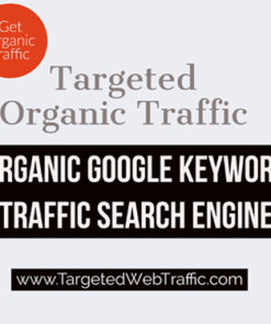 Buy Targeted Organic Website Traffic | Geo Keyword Targeted website traffic