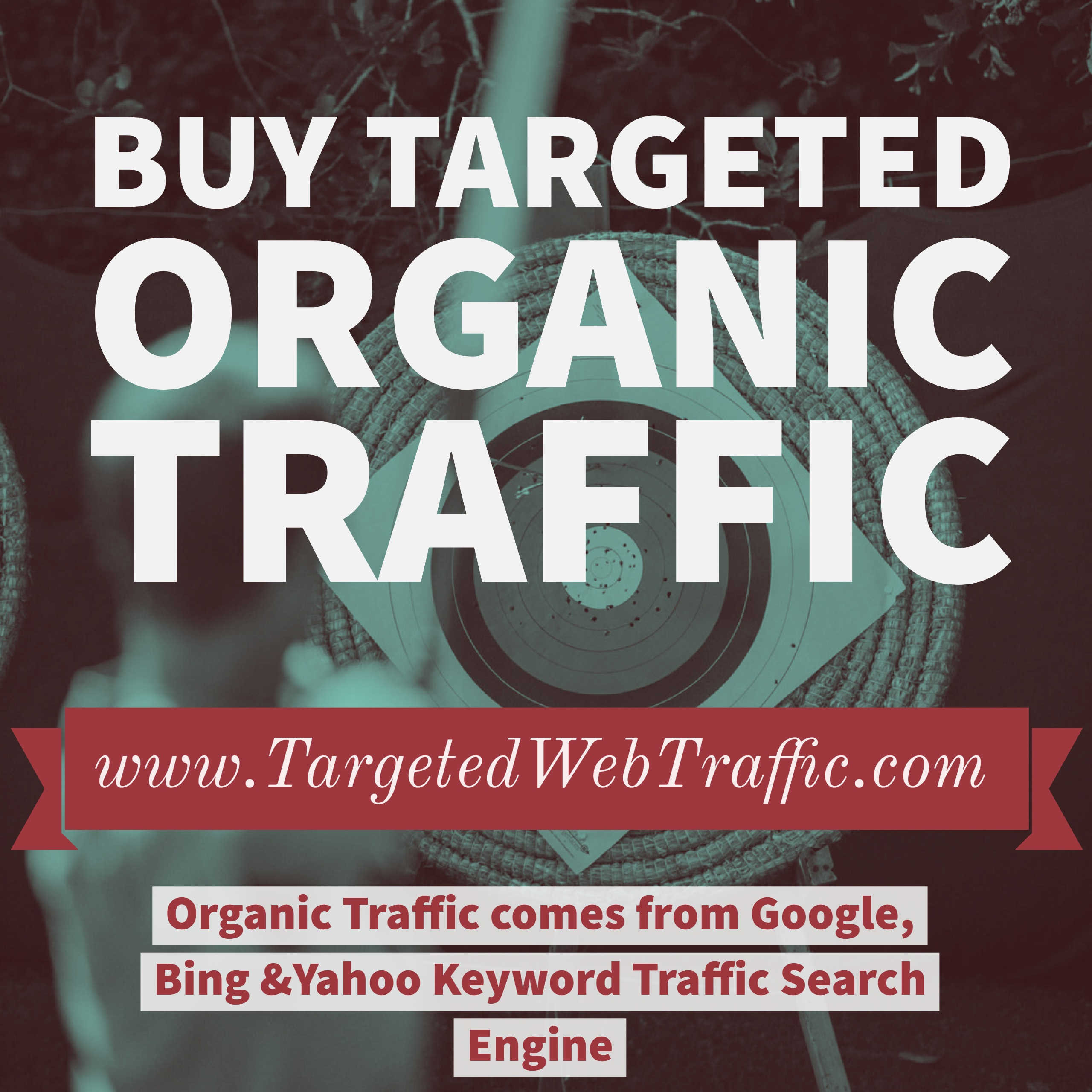 Getting The Buy Web Traffic To Work